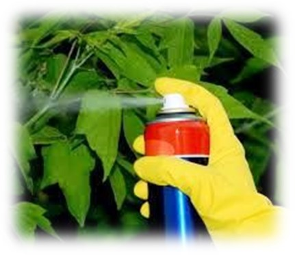 Foto de insecticida